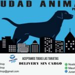 Ciudad Animal